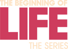 the beginning of life the series netflix